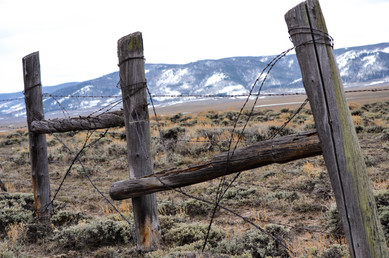 Fence with a Past