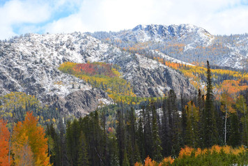 Sierra Madres Fall Color