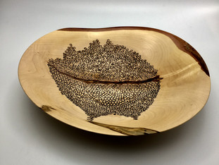 Segregation Bowl