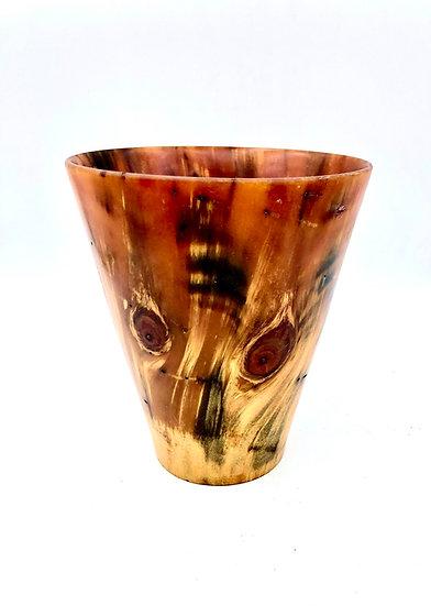 Norfolk Island Pine Vase Face