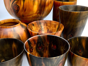 Norfolk Island Pine Vases