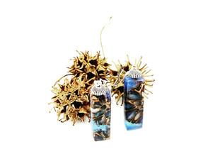 Gum Tree Seed Pod Earrings