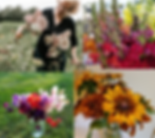 cool flowers 1 2020.png