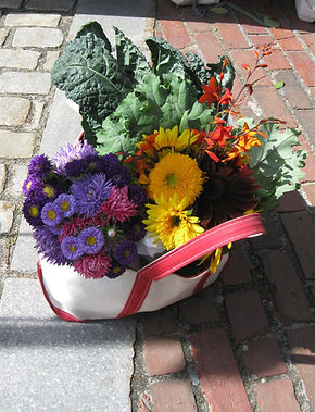 bean bag filled with veggies and flowers