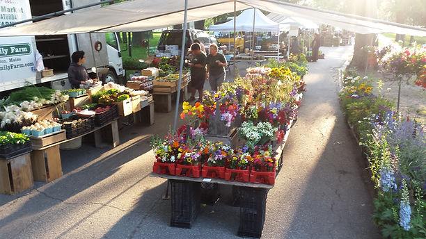 display at Saturday Portland Farmers' Market