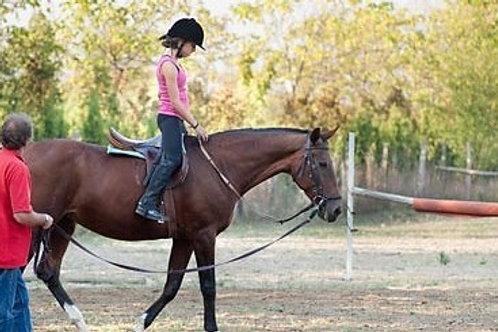 aulas de equitação em belém