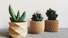 The 3D Wood-Printed Minimal Design Vase