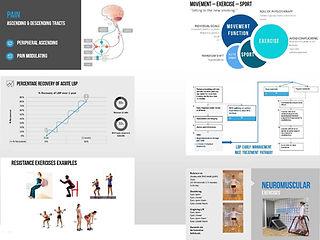 low back pain slide examples.jpg