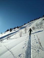 Ski touring _ ski de randonnée _ ski de rando alpe d'huez _ seb ballereau _ 1ere trace