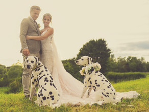 We just 'click': An interview with Paul Willetts Photography