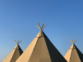 Tents and Sustainability: your eco-friendly wedding
