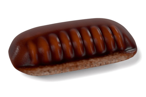 Cockroach Egg Case