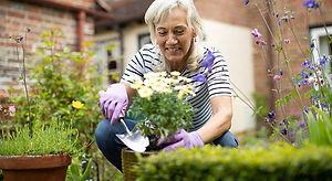 1152789022 Lady Gardening.jpg