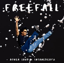Asher Laub - Freefall