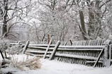 Is Your Garden Fence Ready For Winter?