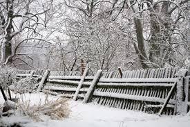 Winter Damaged Fence