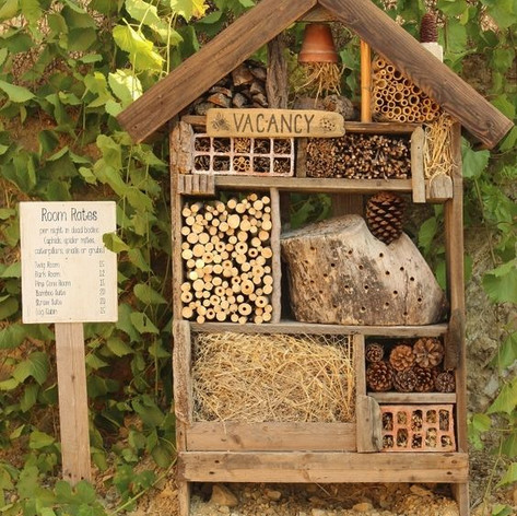 Insect House.jpg