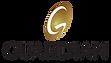 Guardian logo.png