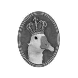 Kráľovstvo Husaciny 2016