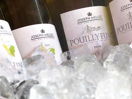 Degustácie vína