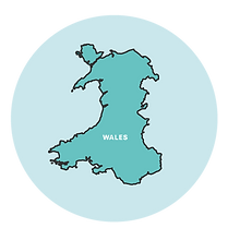 2016-NHS-Wales.png