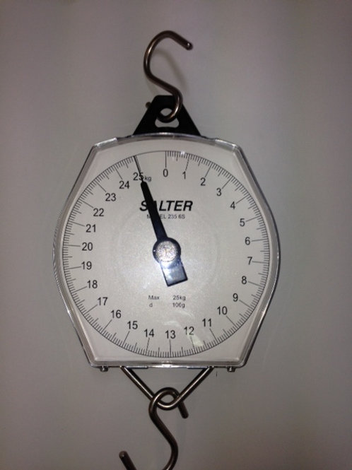 Hanging Scales 25Kg