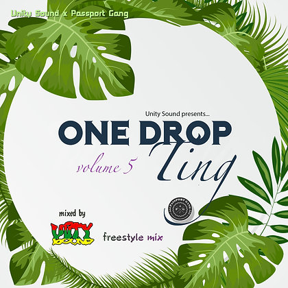 [Single Mp3] One Drop Ting v5 Mix