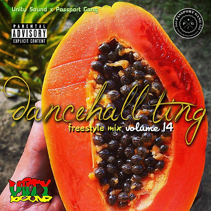 [Single Mp3] Dancehall Ting v14