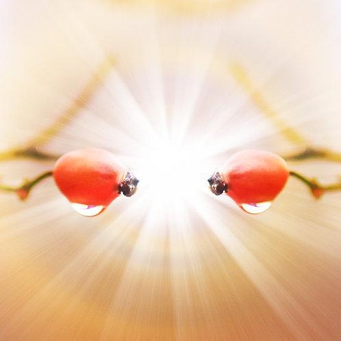 Meditace - ZRCADLENÍ A ILUZE