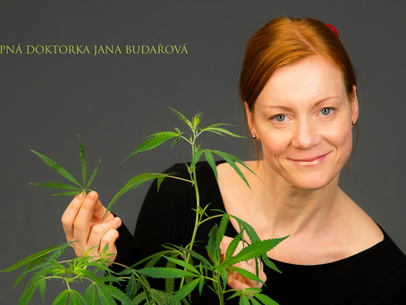 Cannabis Medicina Liberata at Abudantiaq