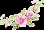 květiny 22.png