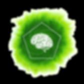 mozek.png