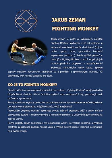 FIGHTING MONKEY - Jakub Zeman
