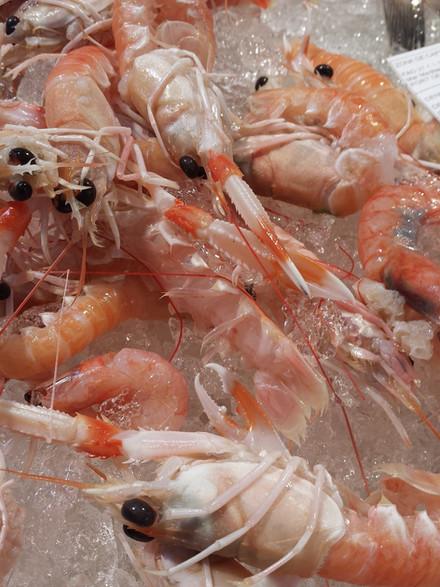 crayfish-697770_1280.jpg