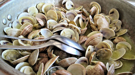 steamed-clams-603110_1280.jpg