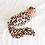 Thumbnail: Sasha Swaddle Headband Set