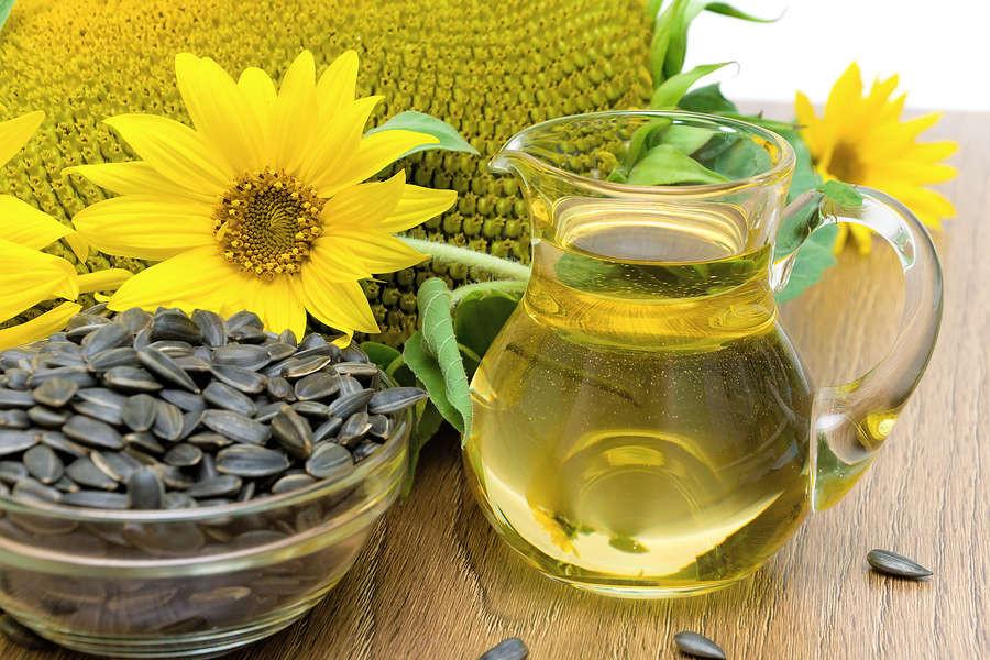 sunflower oil in Righteous Skin