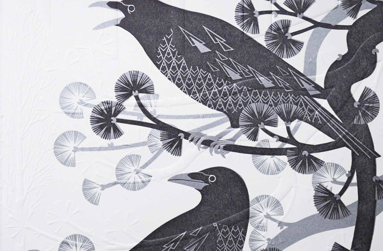 crow 12.jpg