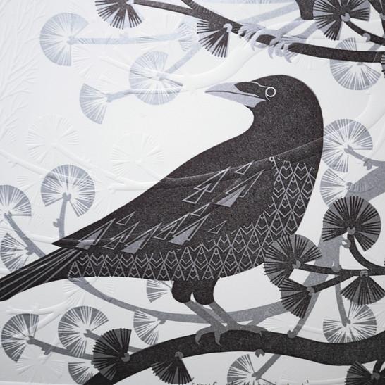 crow 14.jpg