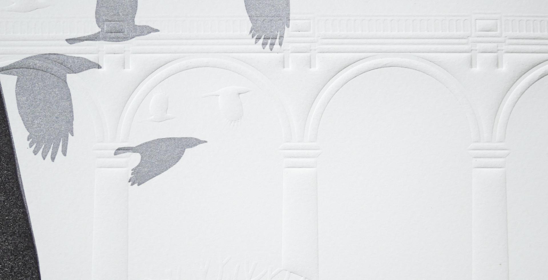 crow 7.jpg