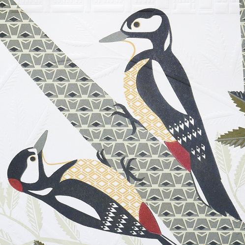 Woodpeckers at Kew Gardens