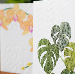 Indoor plants greeting cards