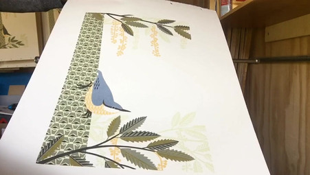 video nuthatch print