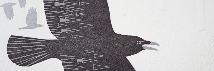 crow%25205_edited_edited.jpg