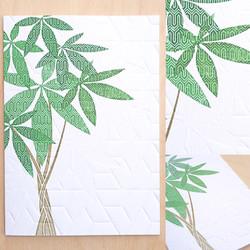 cards pictures copy copy9