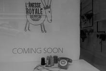 Νέο Atelier L'Anesse Royale