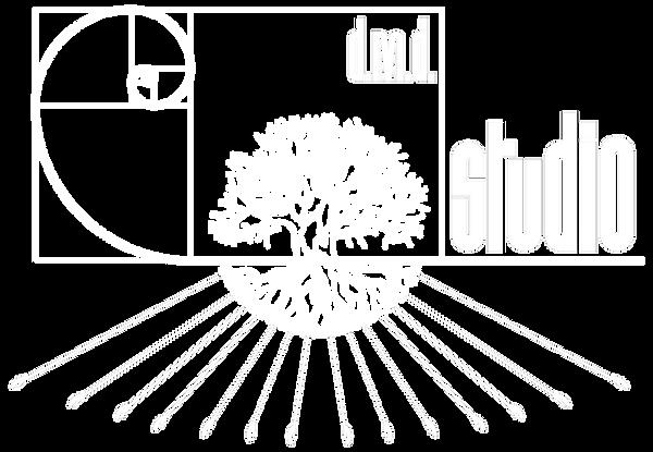 dmdstudio logo white.png