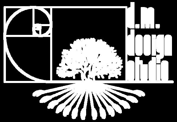 dm design studio logo white.png