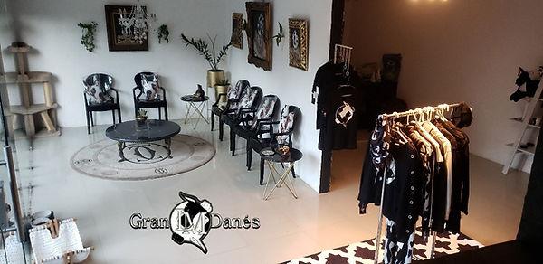 oficina de Gran Danes Lm criadero Puebla