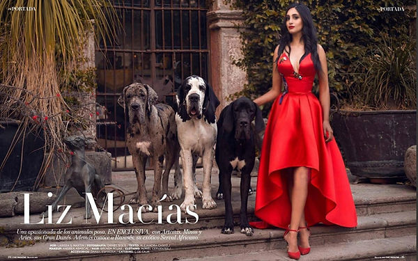perros gran danes Liz MACIAS EUROPEOS.jp